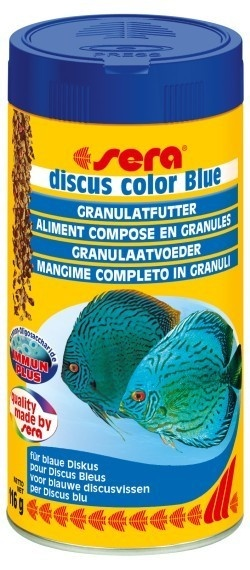 discus color Blue